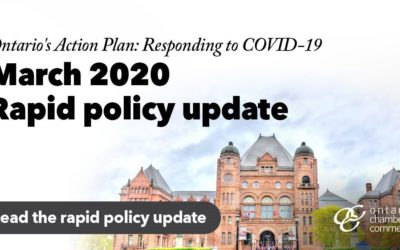 2020 Provincial Economic and Fiscal Update Provides Relief for Ontario Business and Employees